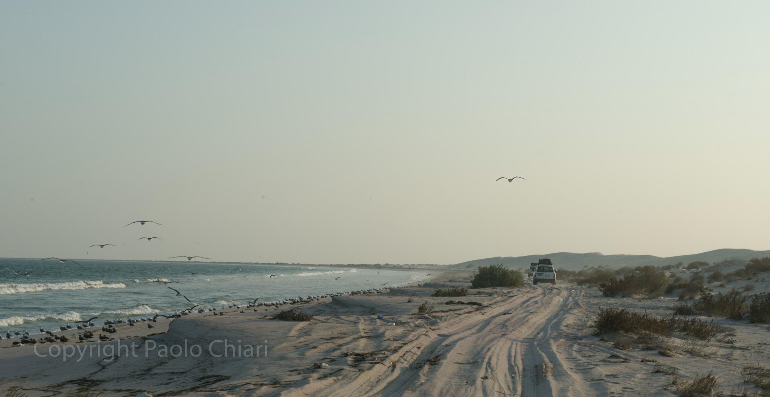 Oman14_729