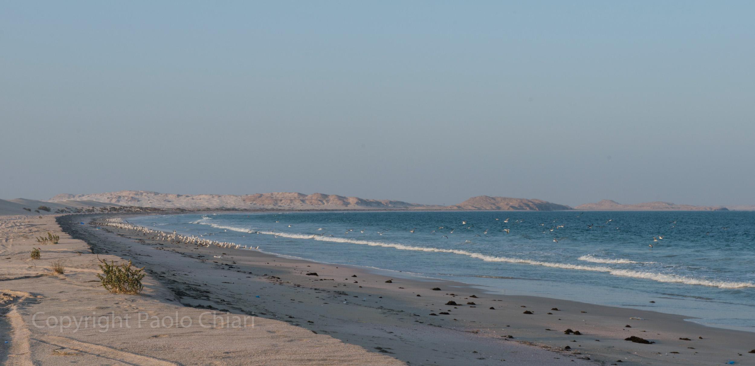 Oman14_740