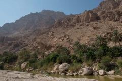 Oman14_113