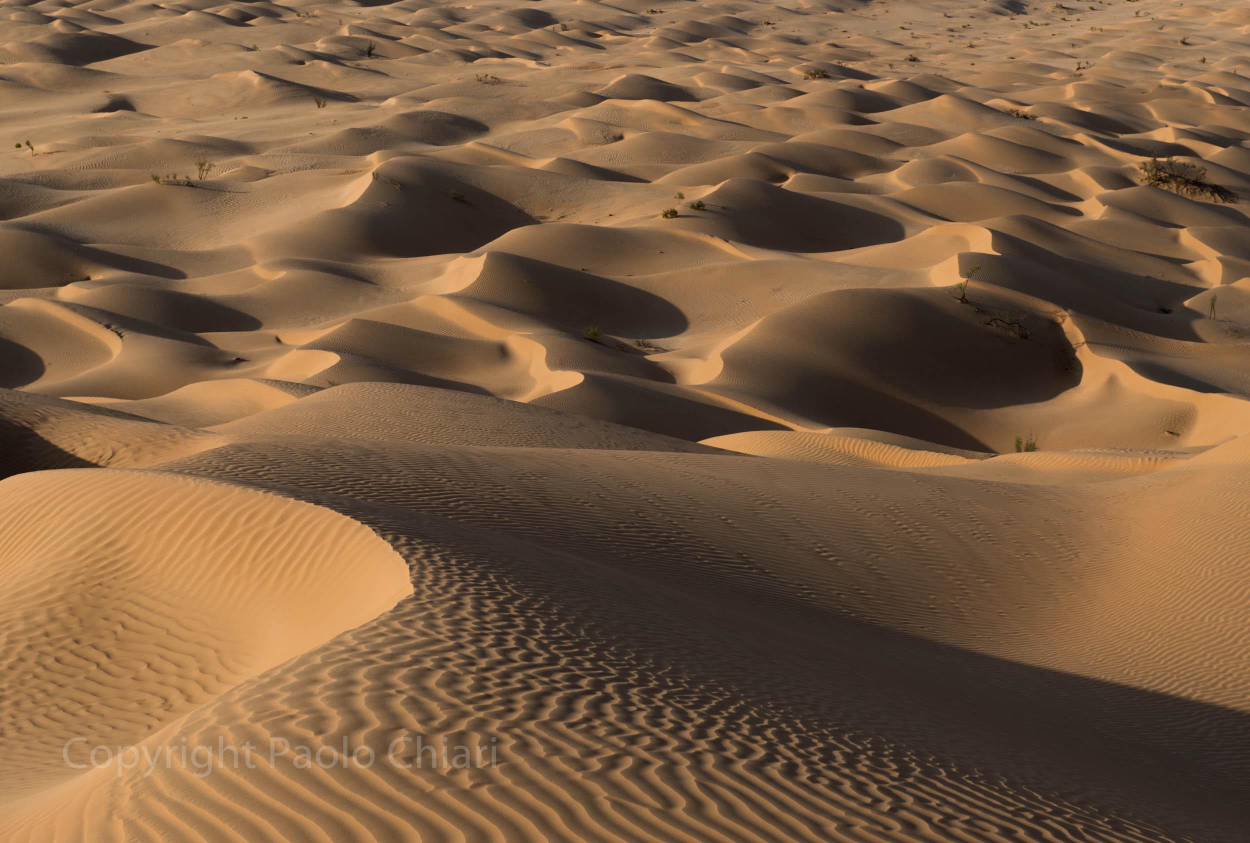 Oman14_1023