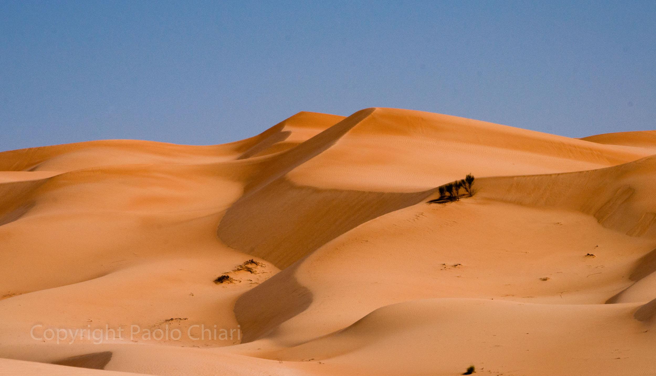 Oman14_1437