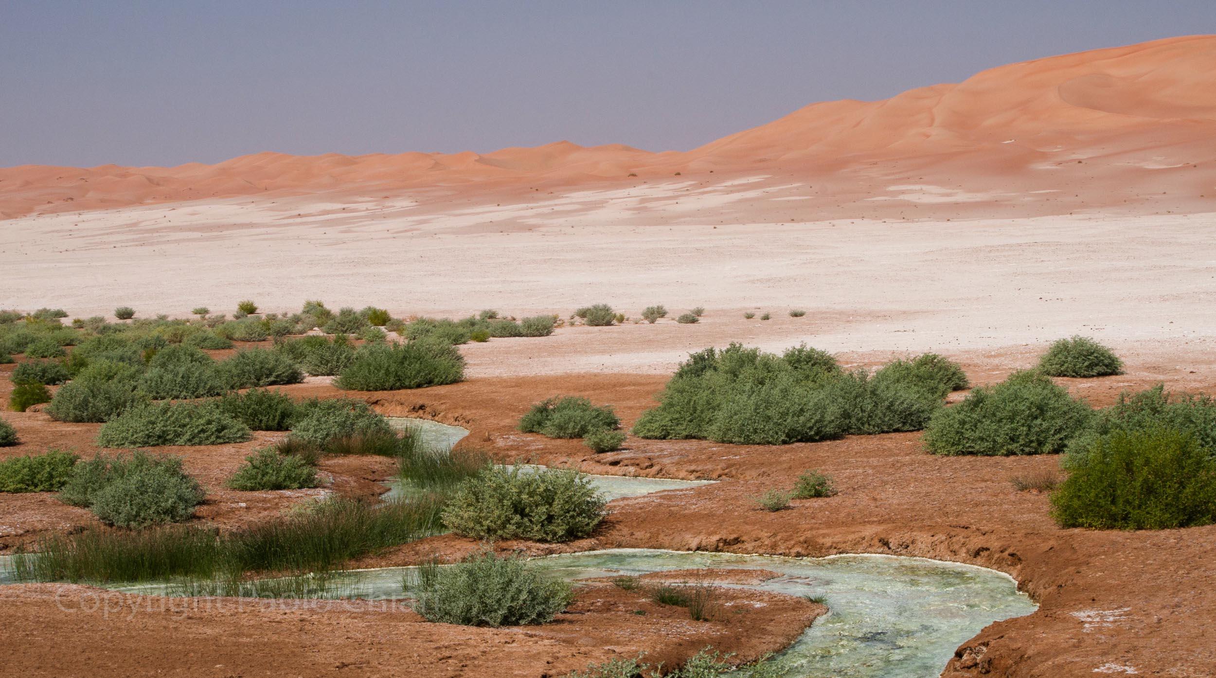 Oman14_1466