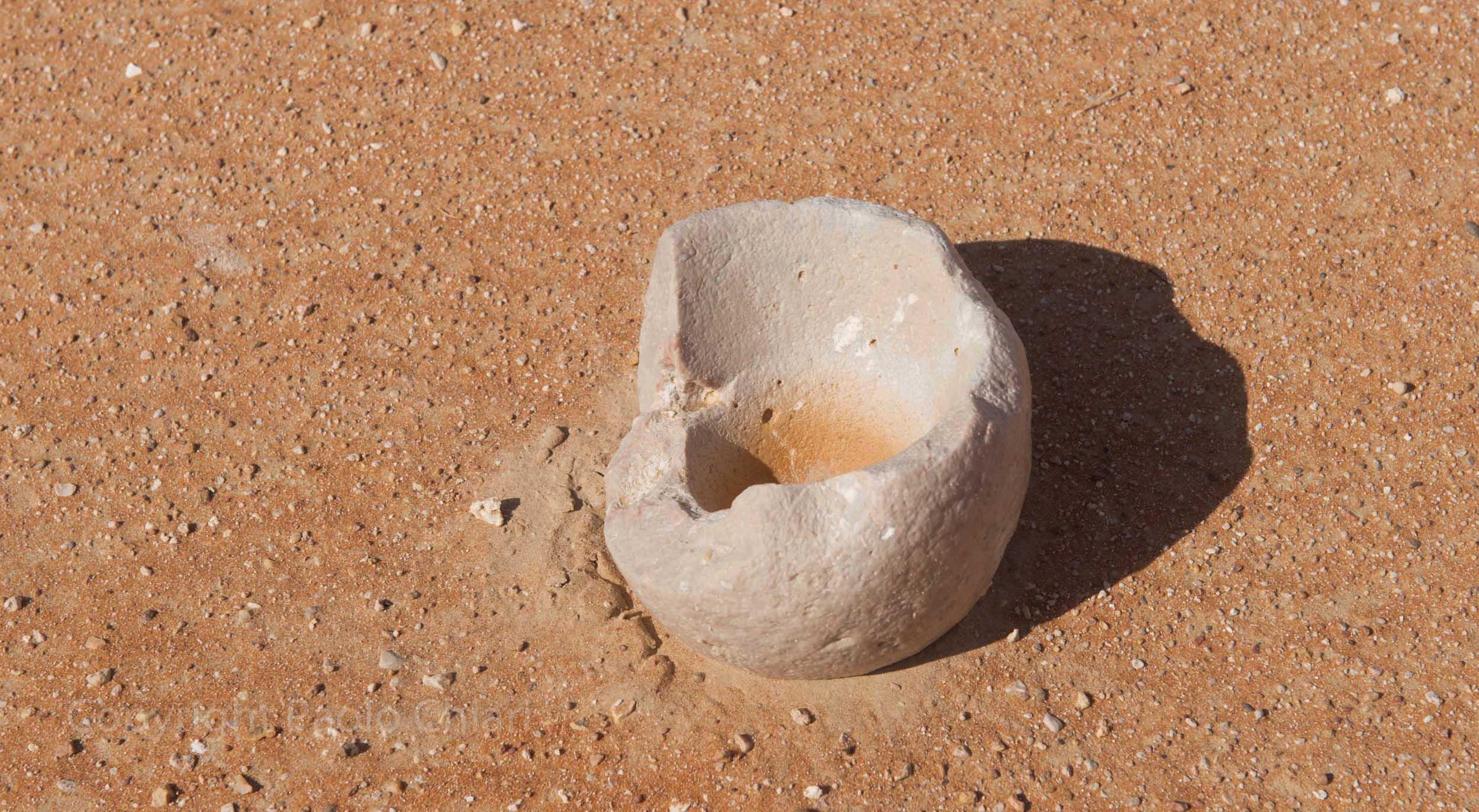 Oman14_1798