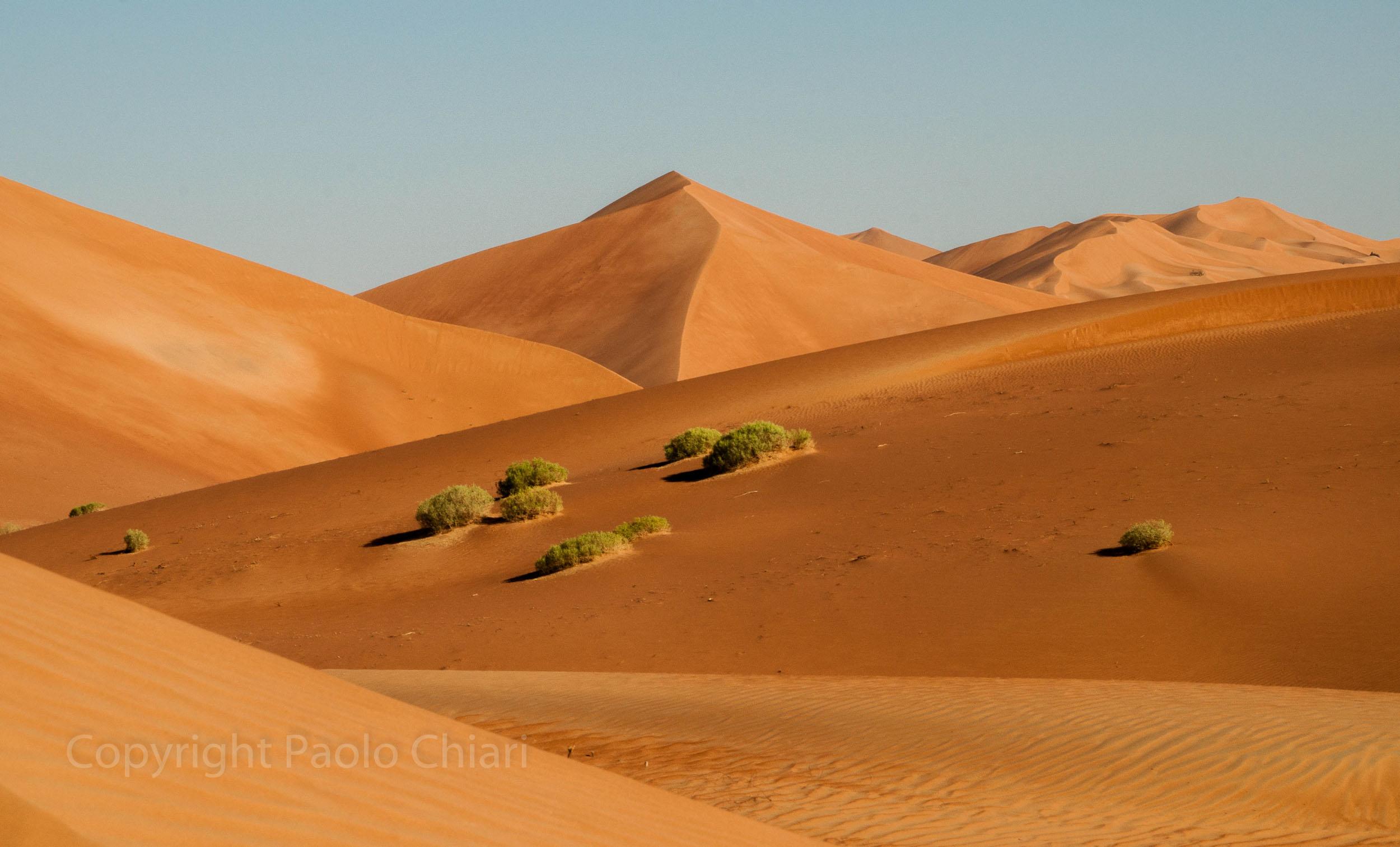 Oman14_2197