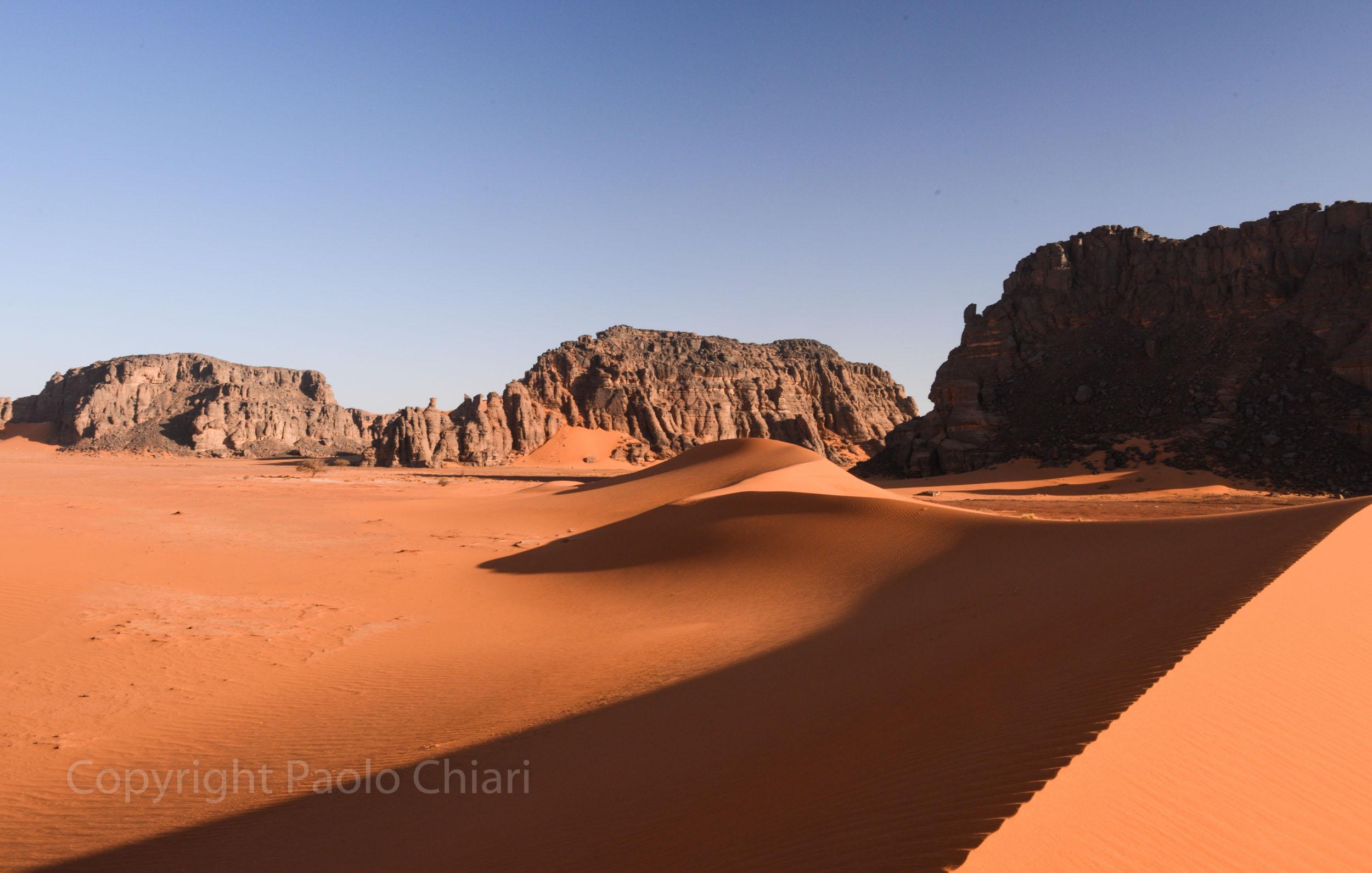 Alger_2014_1082