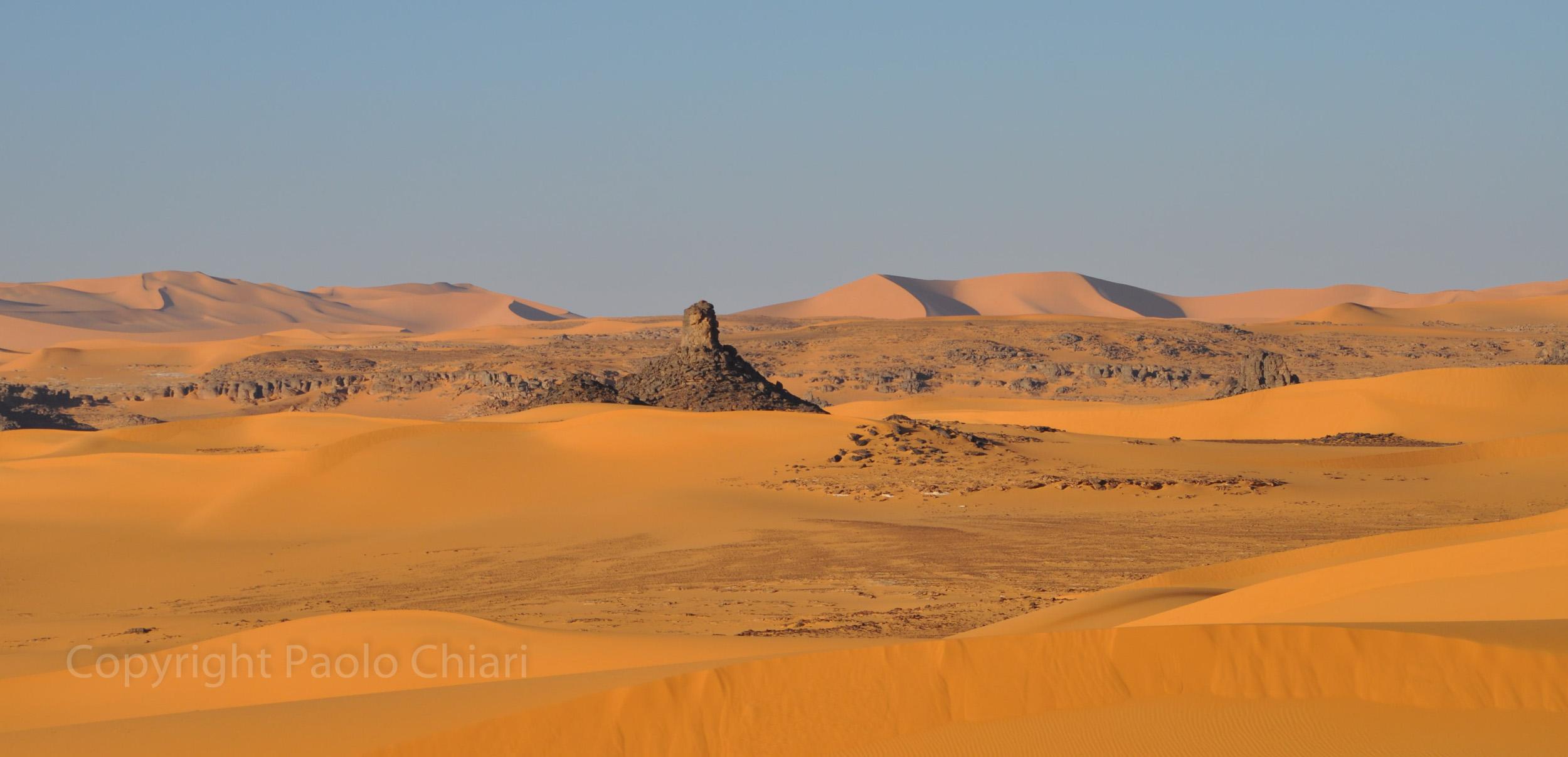 Alger_2014_1307