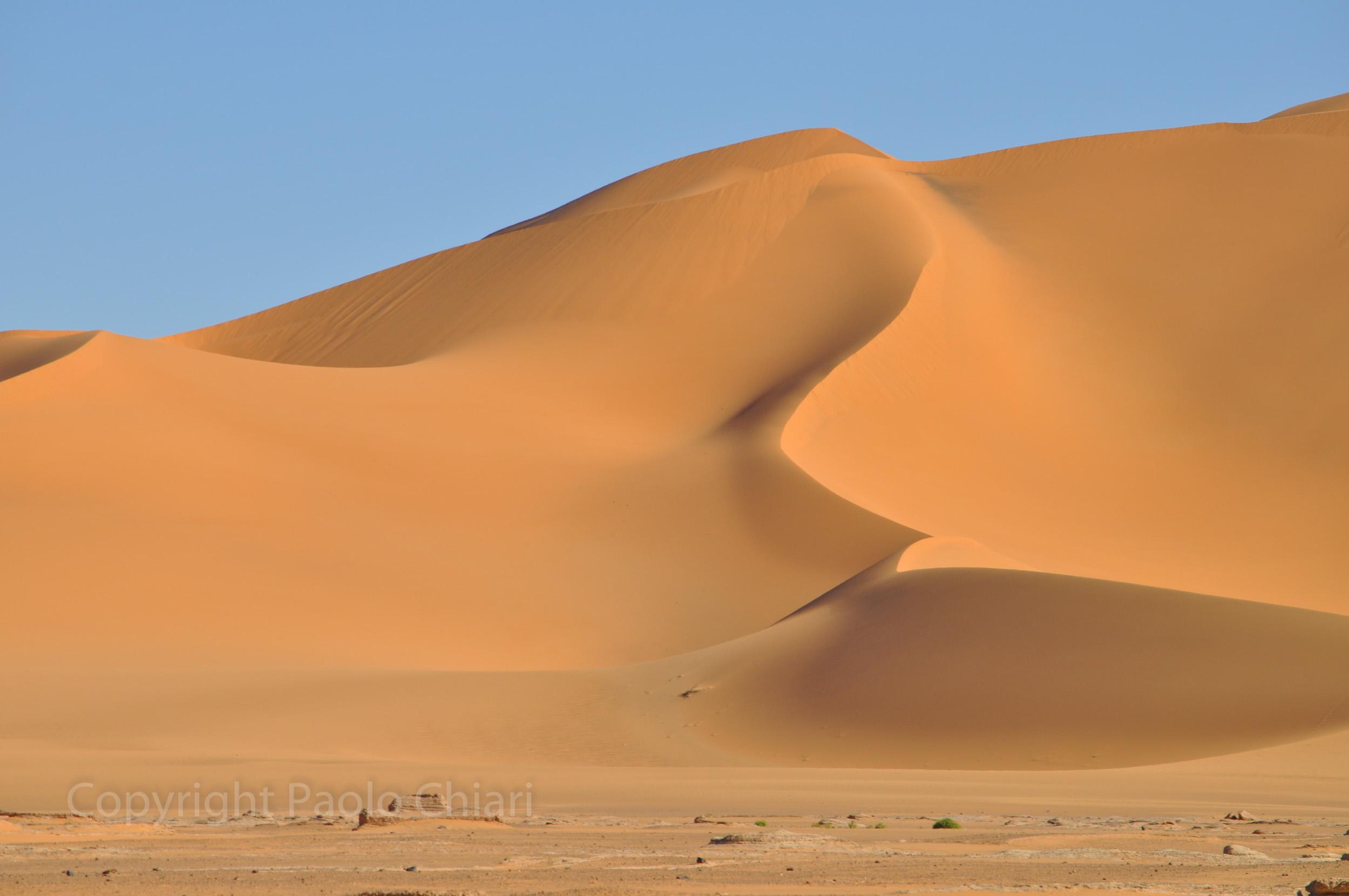 Alger_2014_1405