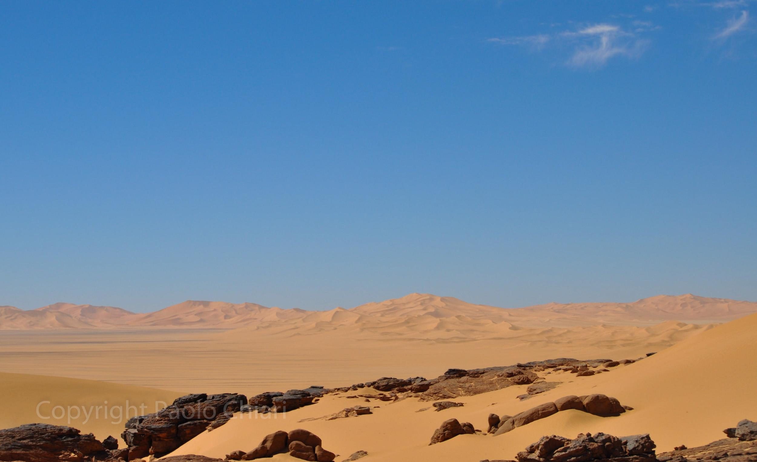Alger_2014_1615