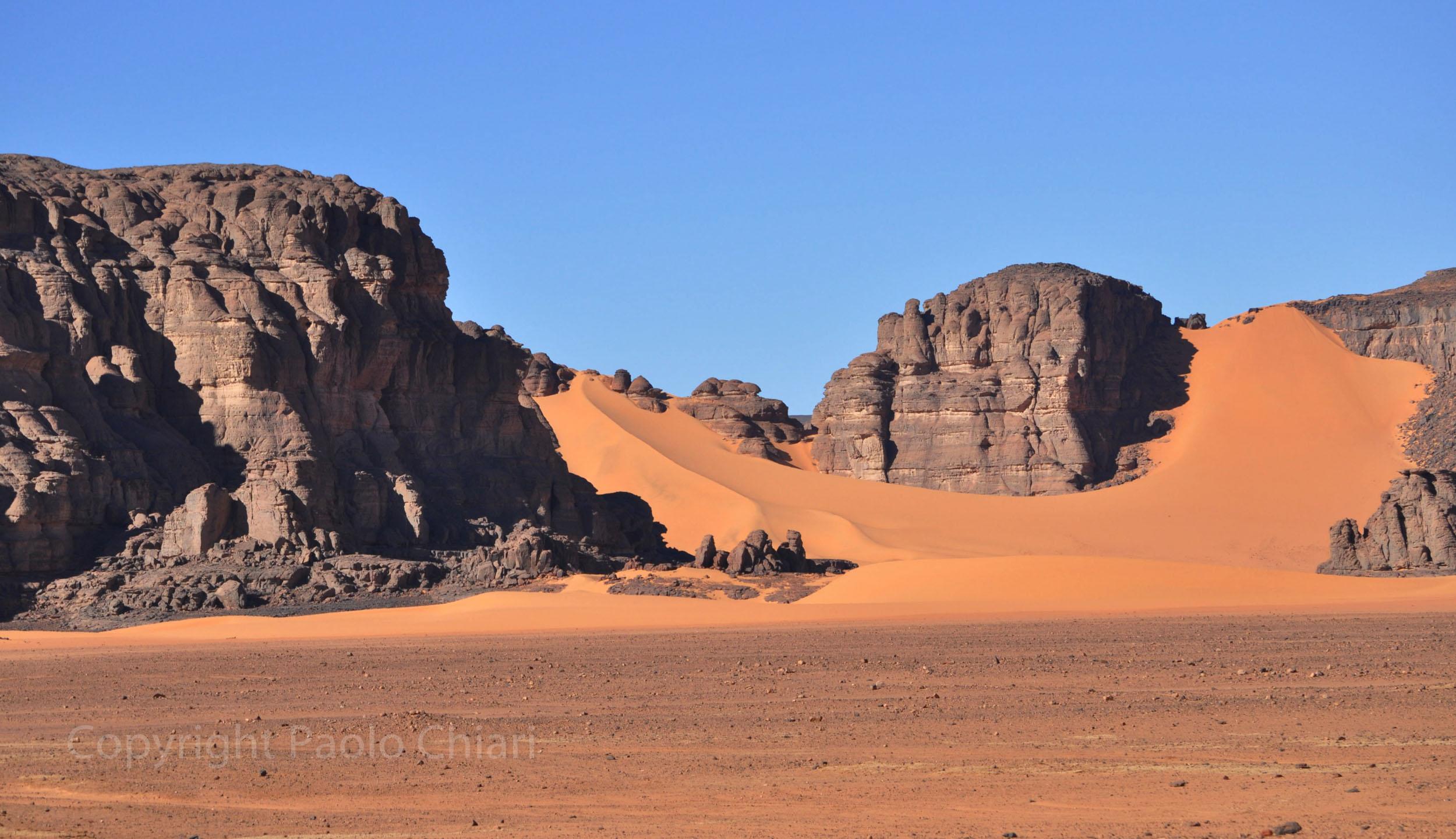 Alger_2014_273