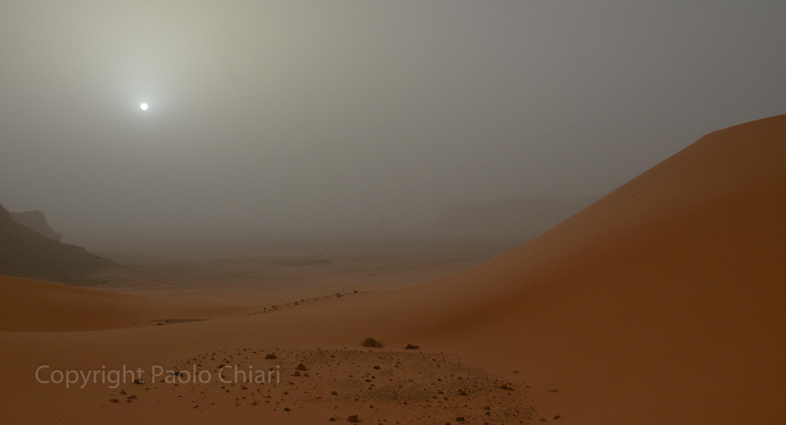 Alger_2014_651