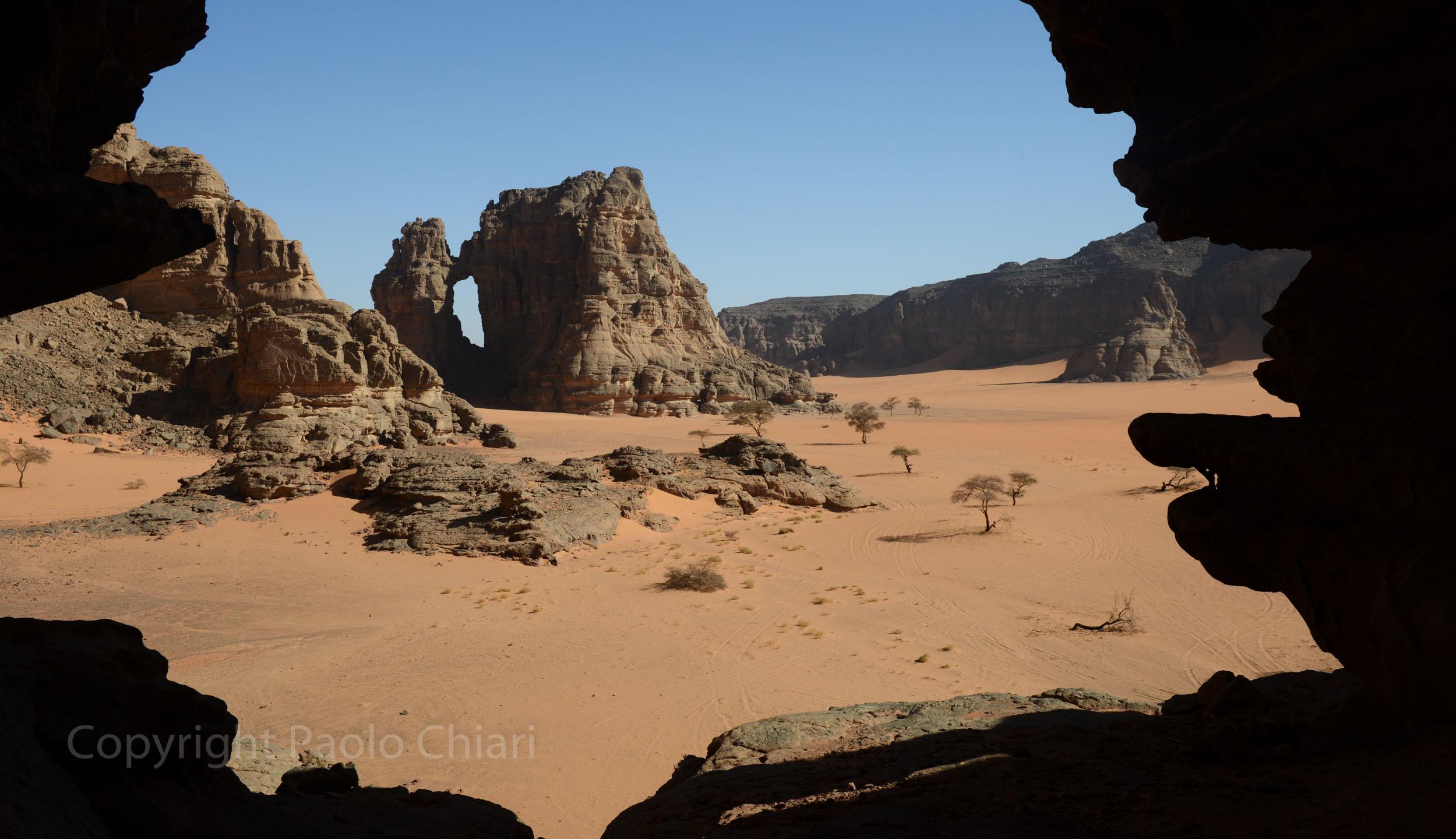 Alger_2014_917